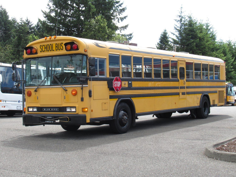 2000 Bluebird All American 84 Passenger School Bus - B87982